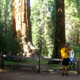 Kings Canyon Sequoias