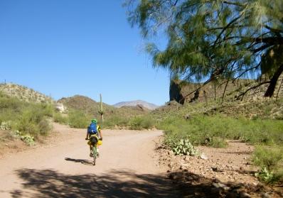 Enjoying the desert scenery.