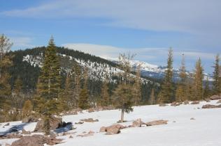 Jumbles along the slopes.