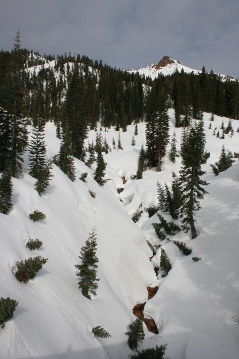The creek that followed alongside Ridge Lake trail.